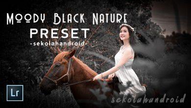 moody black nature preset lightroom mobile